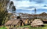 Parque Neolitico La Draga