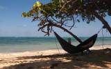 libro verano vacaciones